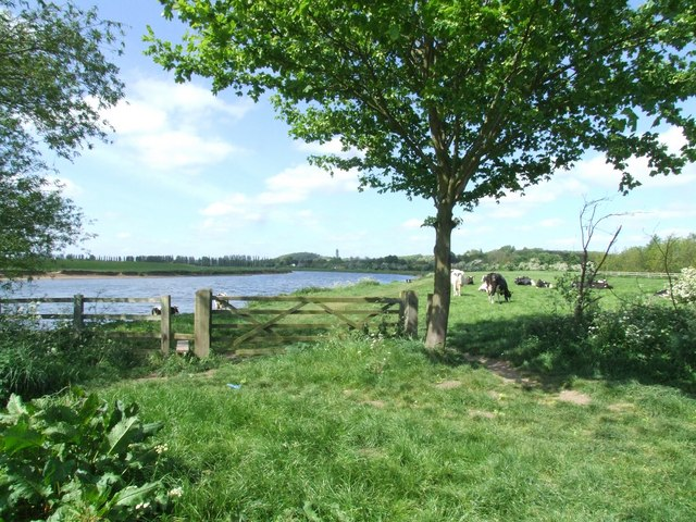 The meadows by the Trent at Burton Joyce