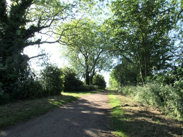 Trent Lane approaching the Trent