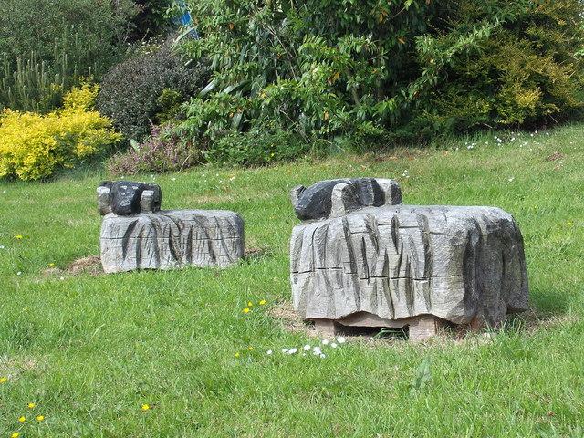 Sheep on Village Green