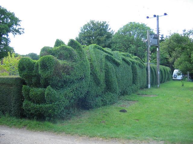 Dragon Hedge, Frizzleton Farm