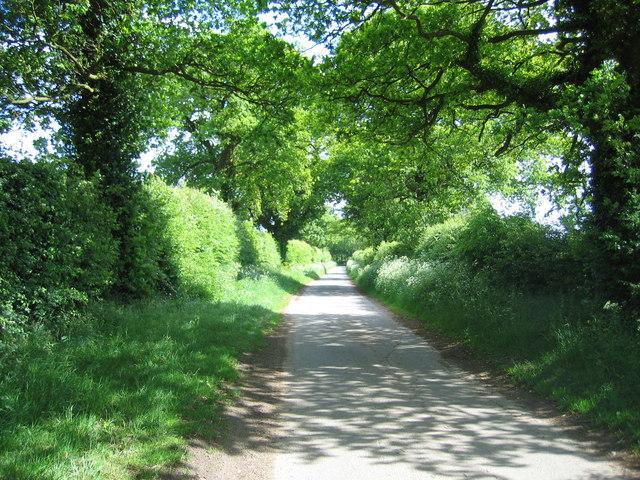 Lane from Bagthorpe to Rudham near Frizzleton Farm
