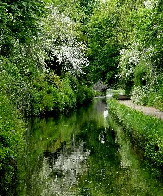 "Marsh Lane ""Narrows"", near Wolverhampton"