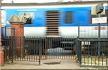 J4791 : Level crossing, Whitehead by Albert Bridge