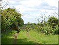 TF7118 : Field gate on farm track west of Gayton by Andy F