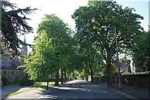 SO7845 : Avenue Road, Malvern by Bob Embleton