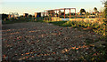 SE9827 : Swanland Allotments by Peter Church