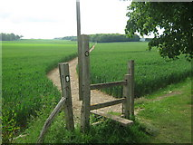 TR0047 : Stile on North Downs Way towards Skeats Wood by David Anstiss