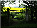 TL0234 : Gate by Dennis simpson