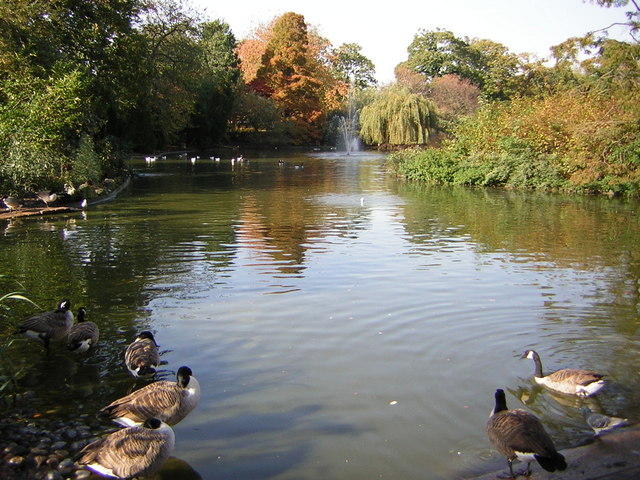 The lake in Greenwich Park