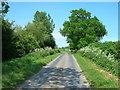 TA1449 : Minor Road Towards Nunkeeling by JThomas