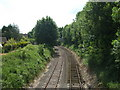 TG1001 : The Mid Norfolk railway spur by Ashley Dace