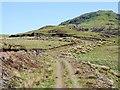 NR7874 : Hill track by Patrick Mackie