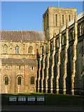 SU4829 : Winchester Cathedral by Stephen McKay