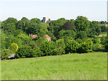 TR3154 : View across The Lynch towards St Mary's church by Nick Smith