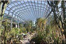 NJ9304 : Arid House at the Winter Gardens by Bill Harrison