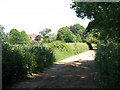 TG3303 : Public bridleway to Claxton by Evelyn Simak