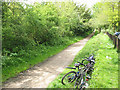 TL2811 : Sustrans route 61 at Cole Green by Stephen Craven