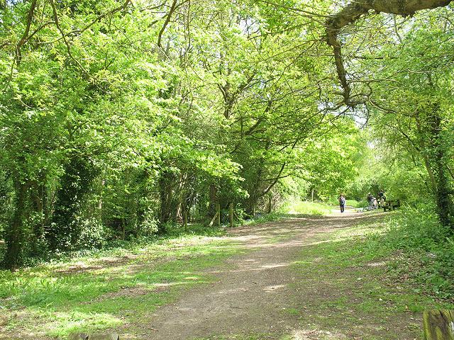 Cole Green picnic area