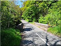 NN9328 : Bridge of Buchanty by Dr Richard Murray