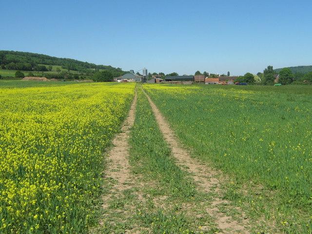 Footpath to Filston Farm