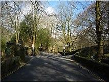 NY3704 : Bridge over the Rothay by DS Pugh