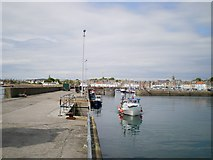 NO5603 : Anstruther harbour from the southwest seawall by Richard Law
