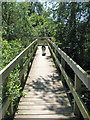 TG3304 : Access bridge to Rockland Bird Hide by Evelyn Simak
