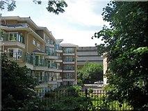 TQ1977 : Kew Riverside Park Housing Development by Chris Reynolds