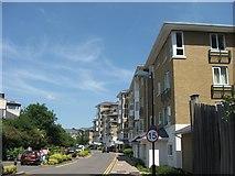 TQ1977 : Strand Drive, Kew Riverside Park by Chris Reynolds