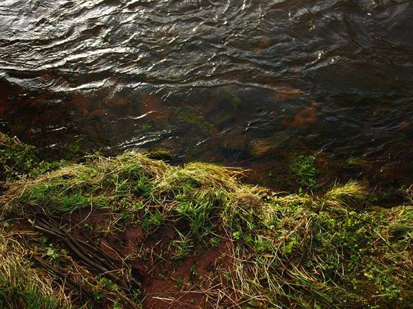 River (Afon) Senni