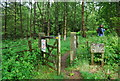 SD0995 : Gate at the entrance to Decoy Woods by N Chadwick
