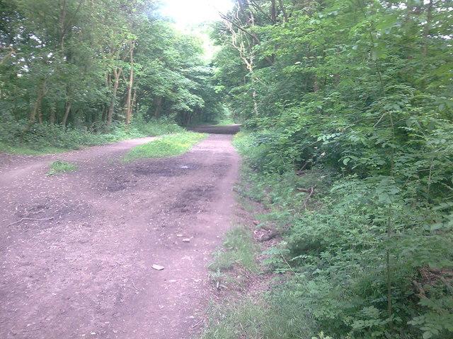 Irwell Valley Way Bridleway