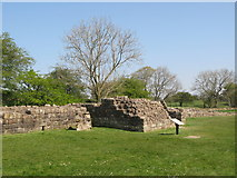 NY5764 : Hadrian's Wall and Turret 52a (Banks East) (2) by Mike Quinn