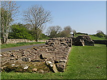 NY5764 : Hadrian's Wall and Turret 52a (Banks East) (3) by Mike Quinn