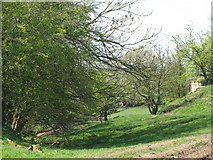 NY5764 : The north defensive ditch of Hadrian's Wall near Pike Hill Tower by Mike Quinn