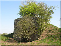NY5764 : Lime kiln at Northrigg Hill Farm (3) by Mike Quinn