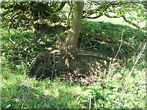 NY5764 : Chamber on the top of the lime kiln at Northrigg Hill Farm by Mike Quinn