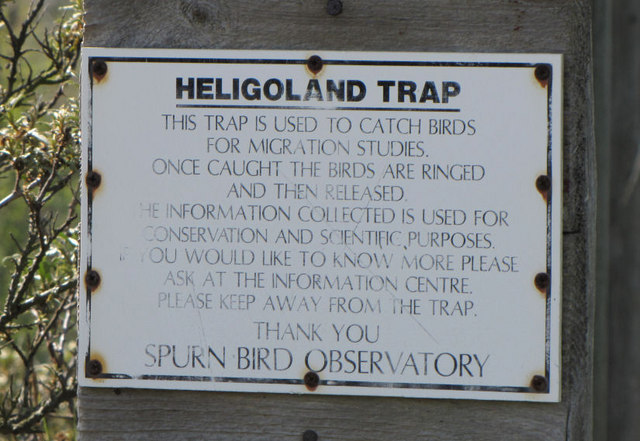 Heligoland Trap, Spurn Point - notice