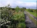 C5547 : Road at Glacknadrumman by Kenneth  Allen