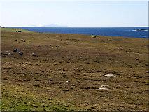 HU3633 : Land near Bridge End, West Burra by Stuart Wilding