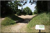 SU6462 : Calleva Amphitheatre by Richard Croft