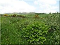 C5033 : Tullyard Townland by Kenneth  Allen