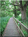 TG3205 : The Ted Ellis Nature Reserve - boardwalk to Home Dyke by Evelyn Simak