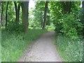 SE1228 : Footpath - Shelf Hall Park Woods by Betty Longbottom