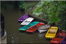 SP5206 : Punts taken from Magdalen Bridge, Oxford by Martin Coull