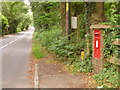 SU1102 : St. Leonards: postbox № BH24 32, Boundary Lane by Chris Downer
