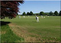 SU1069 : Cricket at Avebury (2) by Derek Harper
