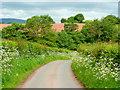 SO4816 : Tregate Lane in spring by Jonathan Billinger