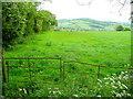 SO4418 : Pasture east of Duke's Wood by Jonathan Billinger