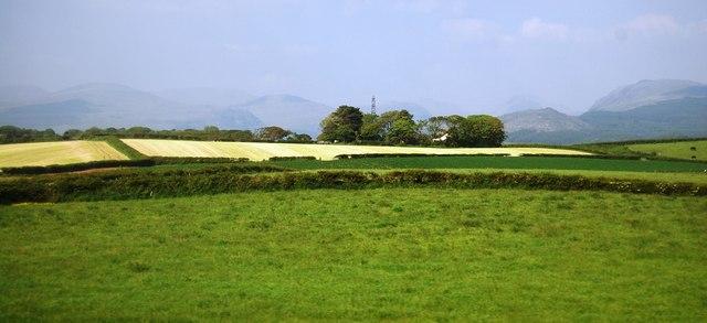 Fields near Mite Houses